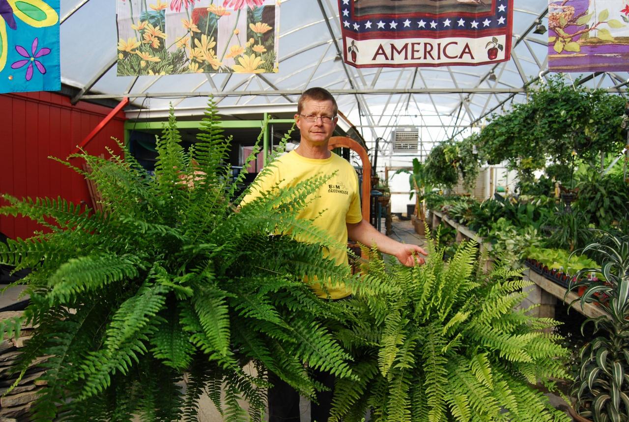 plant rentals